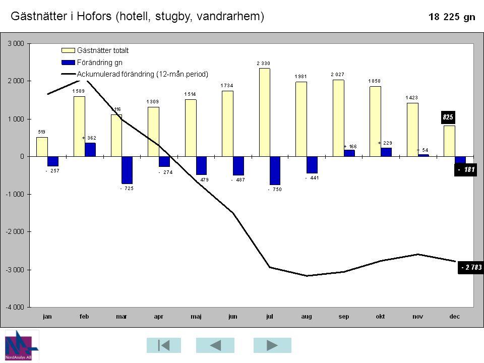 Gästnätter i Hofors (hotell, stugby, vandrarhem)