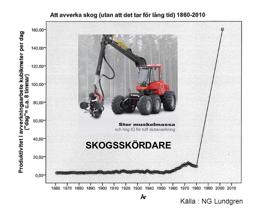 SKOGSSKÖRDARE Källa : NG Lundgren