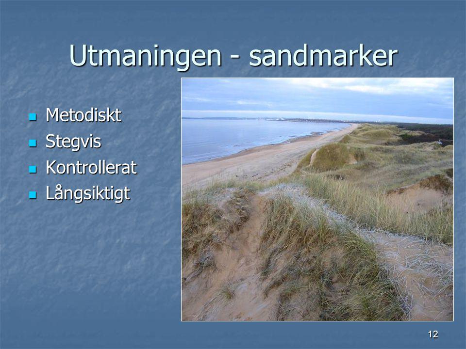 12 Utmaningen - sandmarker Metodiskt Metodiskt Stegvis Stegvis Kontrollerat Kontrollerat Långsiktigt Långsiktigt