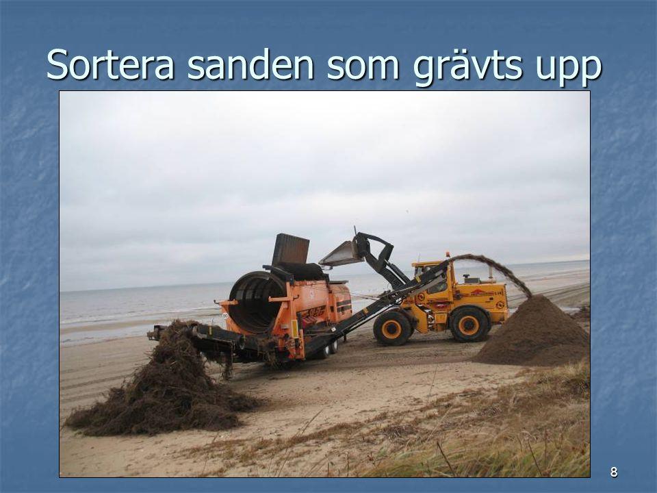 8 Sortera sanden som grävts upp