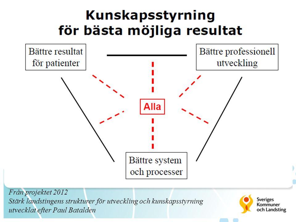 12 Från projektet 2012 Stärk landstingens strukturer för utveckling och kunskapsstyrning utvecklat efter Paul Batalden