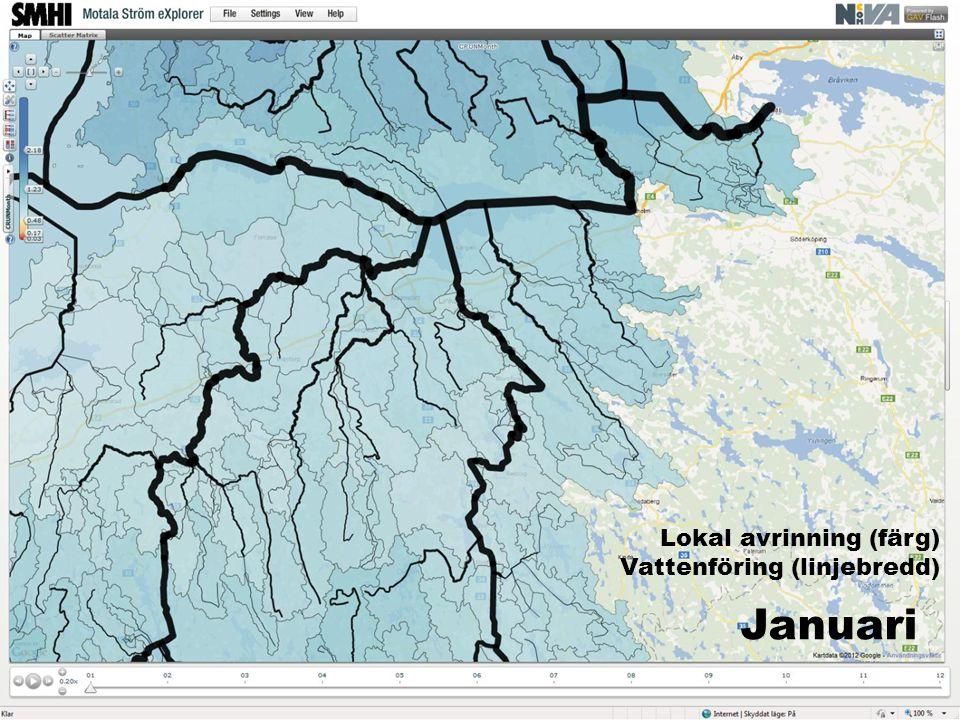 Januari Lokal avrinning (färg) Vattenföring (linjebredd)