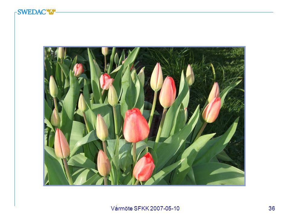 Vårmöte SFKK 2007-05-1036