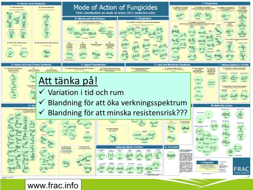 www.frac.info Att tänka på.