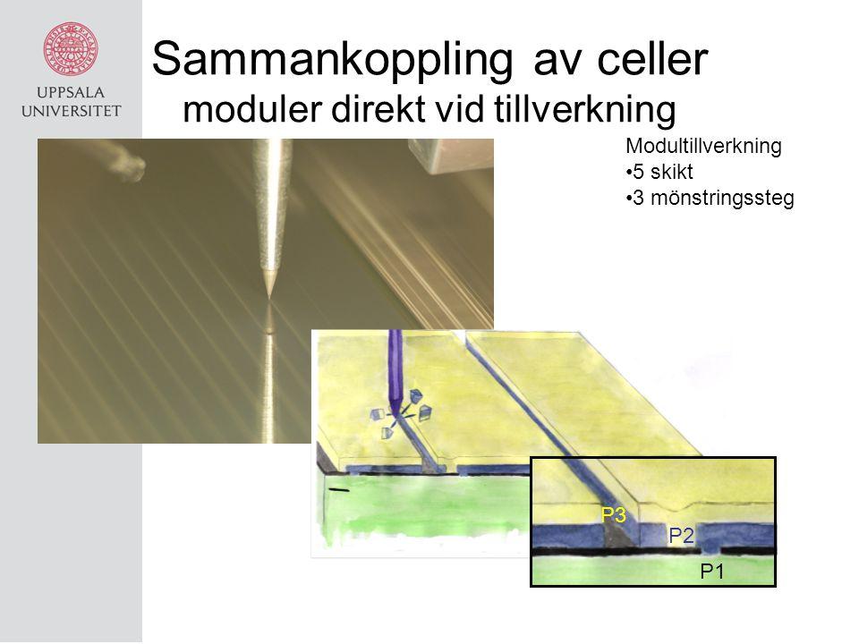 Sammankoppling av celler moduler direkt vid tillverkning Modultillverkning 5 skikt 3 mönstringssteg P1 P2 P3
