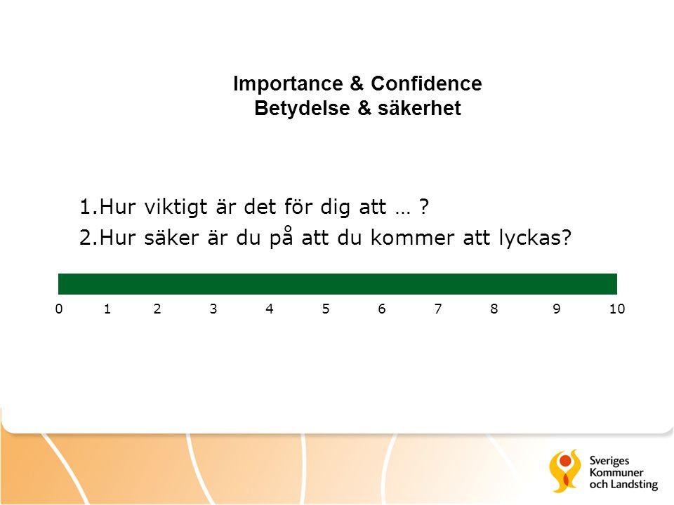 Importance & Confidence Betydelse & säkerhet 1.Hur viktigt är det för dig att … ? 2.Hur säker är du på att du kommer att lyckas? 012345678910