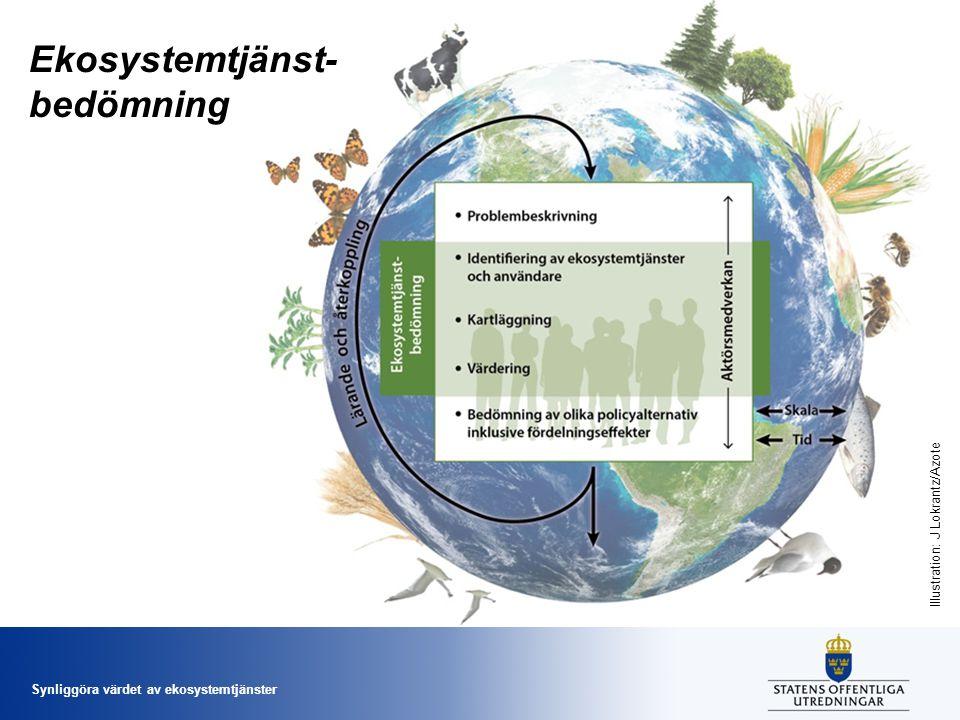 Synliggöra värdet av ekosystemtjänster Ekosystemtjänst- bedömning Illustration: J Lokrantz/Azote