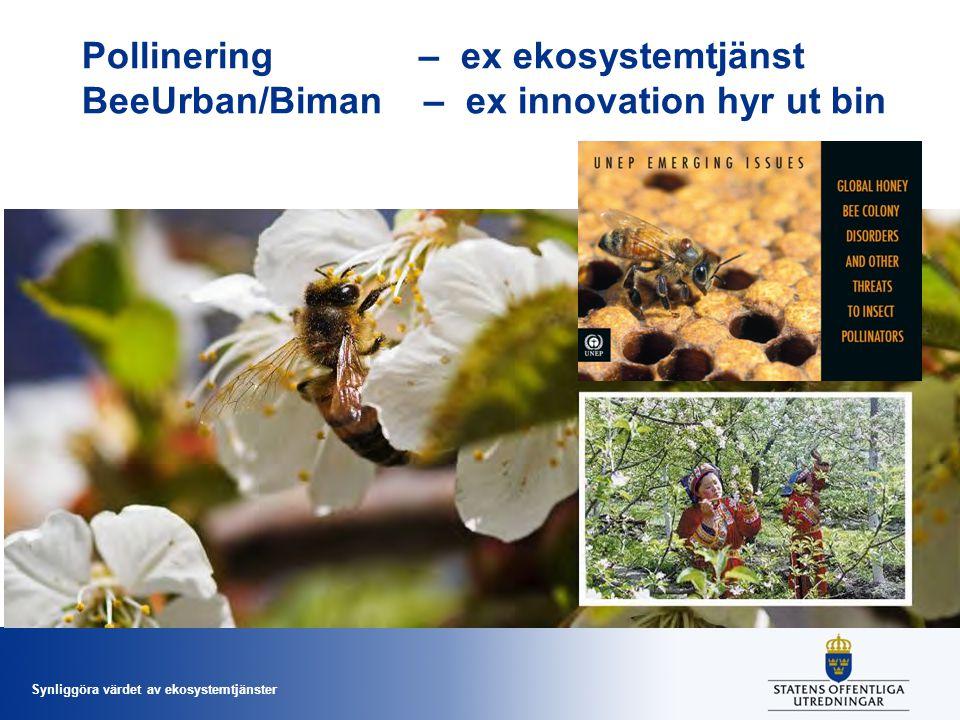 Synliggöra värdet av ekosystemtjänster Pollinering – ex ekosystemtjänst BeeUrban/Biman – ex innovation hyr ut bin