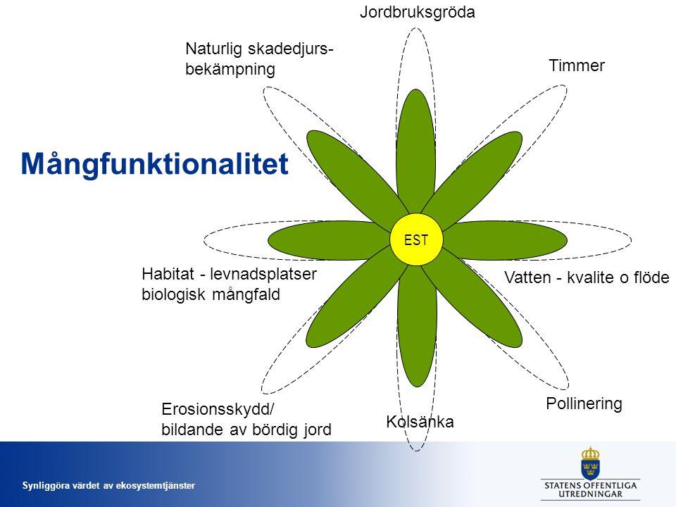 Synliggöra värdet av ekosystemtjänster Mål för ekosystemtjänster Nagoyaplanen 2010 + EU-strategi för biologisk mångfald 2011-2020 Riksdagens generationsmål 2010 Etappmål och preciseringar i miljömålssystemet 2012 Utredningens direktiv: - Integrering i beslutsprocesser - Bättre kunskapsunderlag