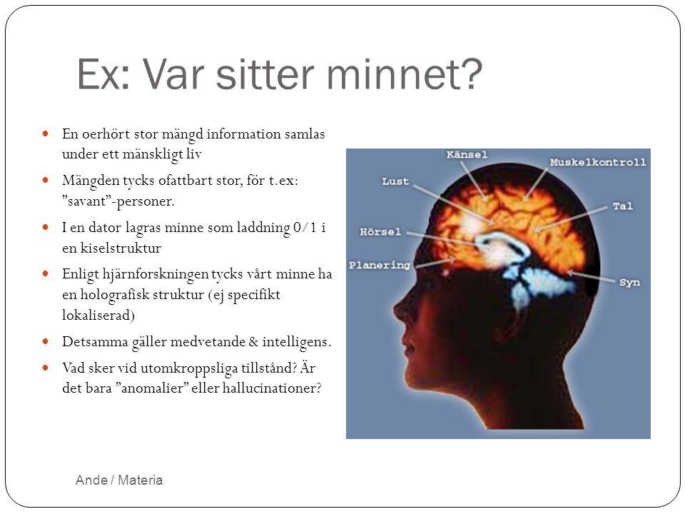 """Ex: Var sitter minnet? En oerhört stor mängd information samlas under ett mänskligt liv Mängden tycks ofattbart stor, för t.ex: """"savant""""-personer. I e"""