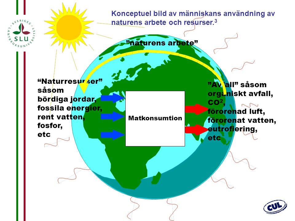 """13 """"Naturresurser"""" såsom bördiga jordar, fossila energier, rent vatten, fosfor, etc """"Avfall"""" såsom organiskt avfall, CO 2, förorenad luft, förorenat v"""