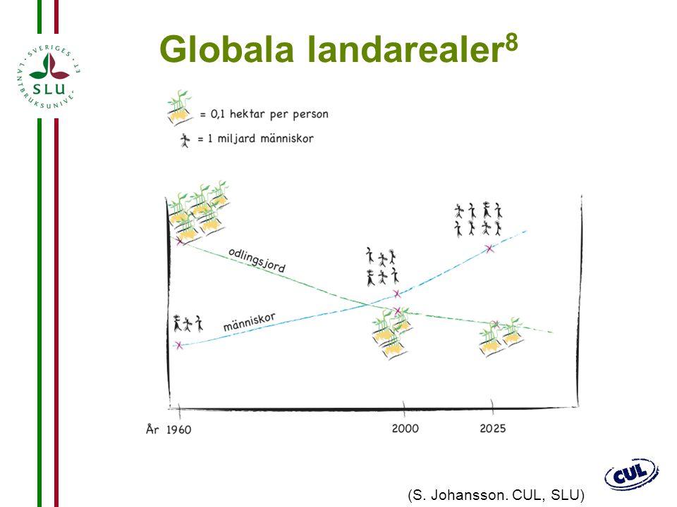23 Globala landarealer 8 (S. Johansson. CUL, SLU)