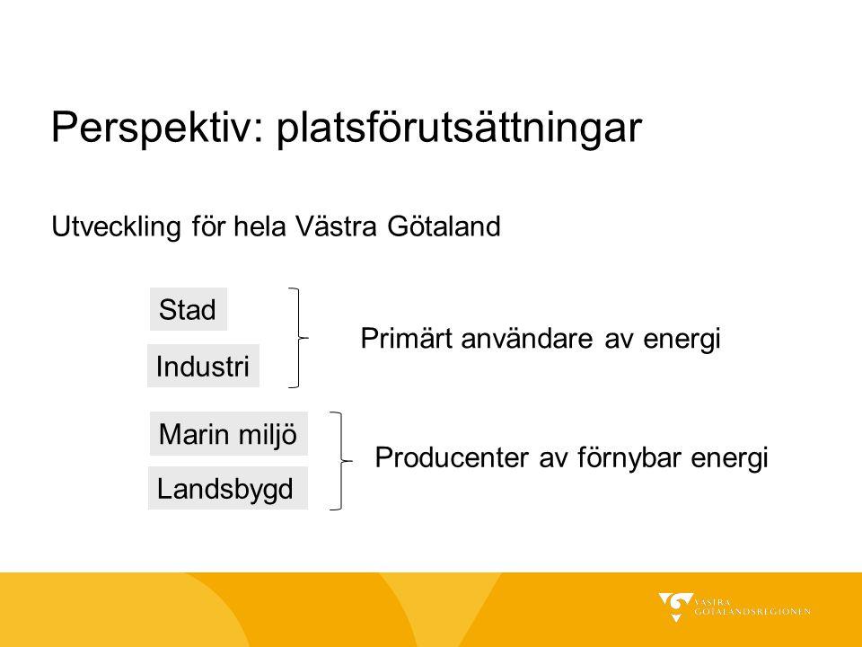 Utveckling för hela Västra Götaland Perspektiv: platsförutsättningar Stad Industri Marin miljö Landsbygd Primärt användare av energi Producenter av fö