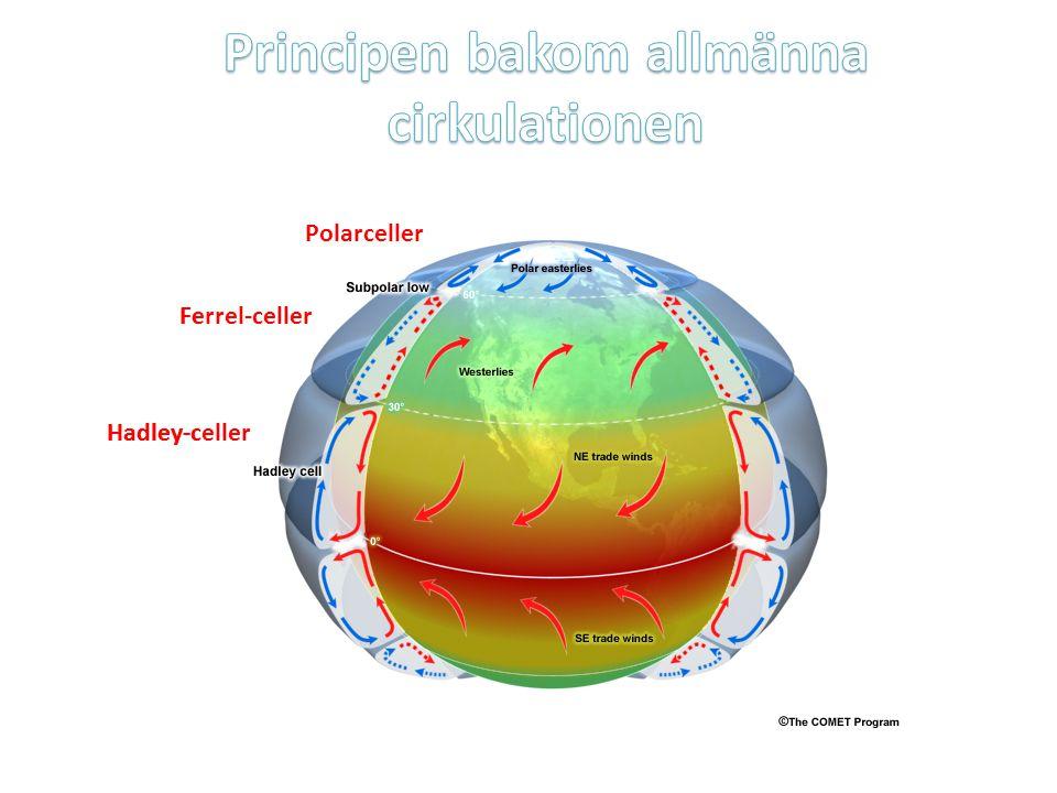 Hadley-celler Ferrel-celler Polarceller passadvindarna Hadley-celler Ferrel-celler Polarceller