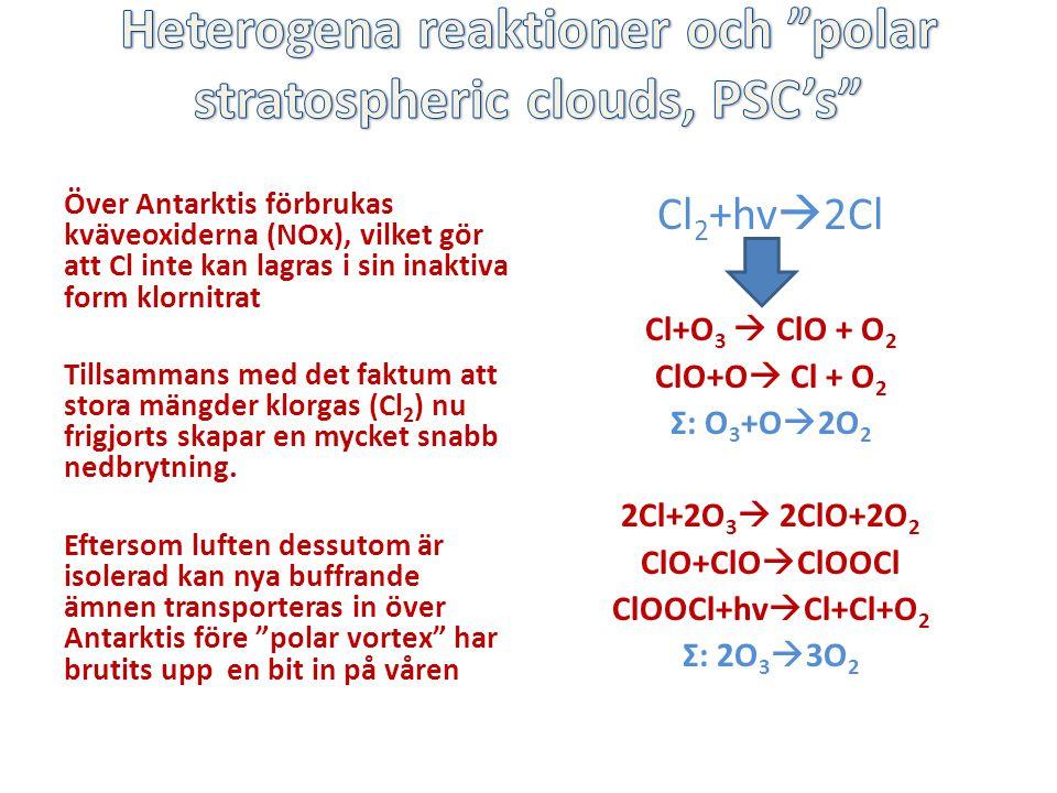 Över Antarktis förbrukas kväveoxiderna (NOx), vilket gör att Cl inte kan lagras i sin inaktiva form klornitrat Tillsammans med det faktum att stora mängder klorgas (Cl 2 ) nu frigjorts skapar en mycket snabb nedbrytning.