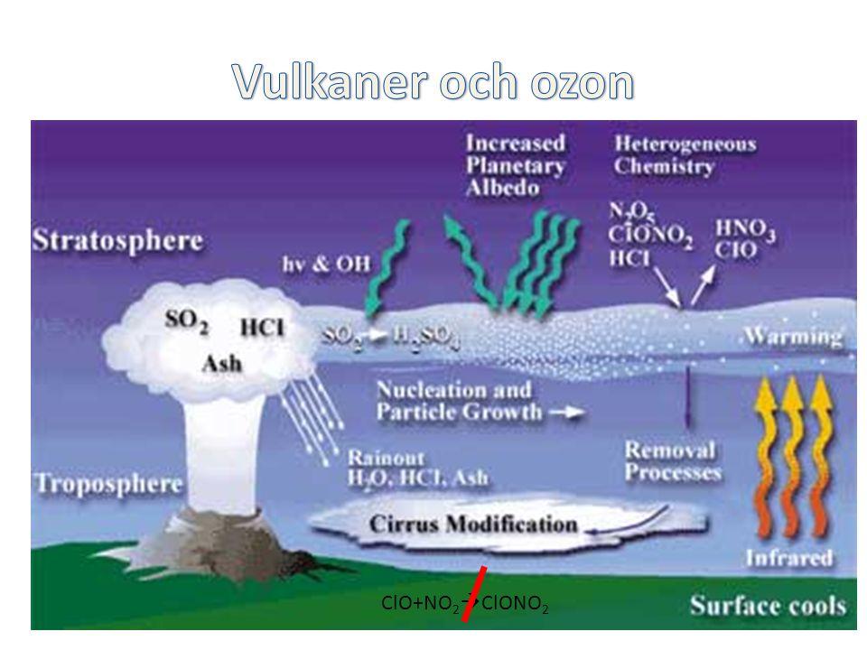 Injektion av HCl och partiklar i stratosfären Mt Pinatubo 1991 gav upphov till en 20-faldig ökning av aerosolytan i stratosfären Heterogena reaktioner frigör klor och bortför NO x ClO+NO 2  ClONO 2  Mer Cl finns tillgängligt för ozonnedbrytning Mt Pinatubo eruption june 1991 ClO+NO 2  ClONO 2