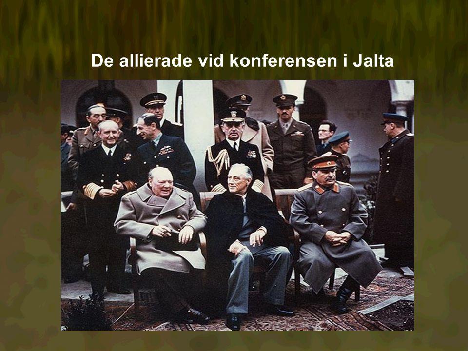 De allierade vid konferensen i Jalta