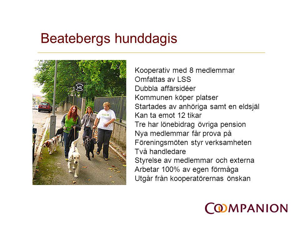 Beatebergs hunddagis V Kooperativ med 8 medlemmar Omfattas av LSS Dubbla affärsidéer Kommunen köper platser Startades av anhöriga samt en eldsjäl Kan