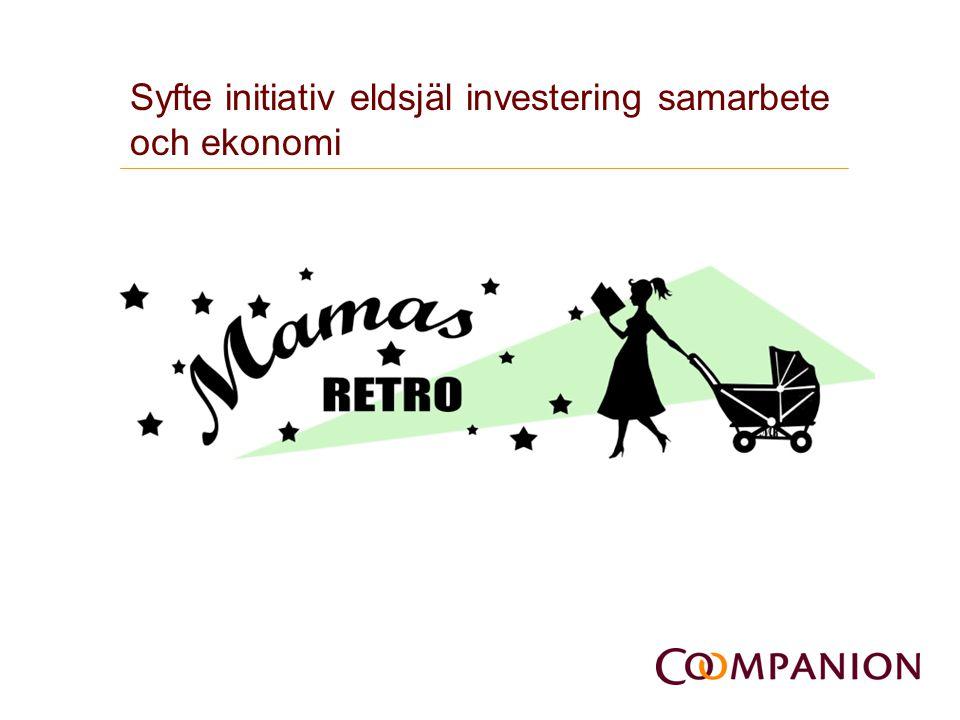 Syfte initiativ eldsjäl investering samarbete och ekonomi