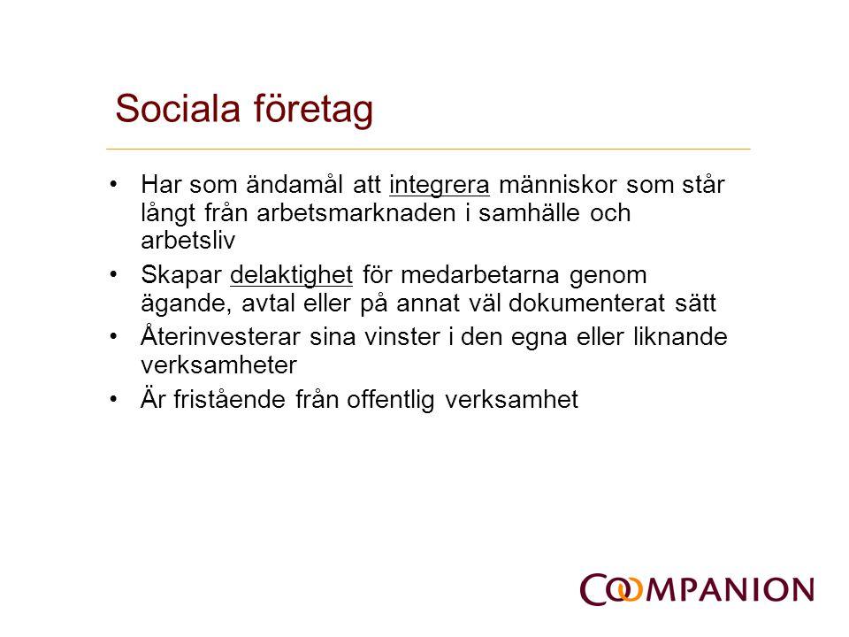 Vilka är de sociala företagen.