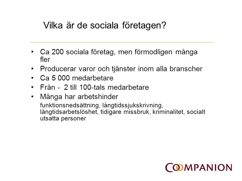 Vilka är de sociala företagen? Ca 200 sociala företag, men förmodligen många fler Producerar varor och tjänster inom alla branscher Ca 5 000 medarbeta
