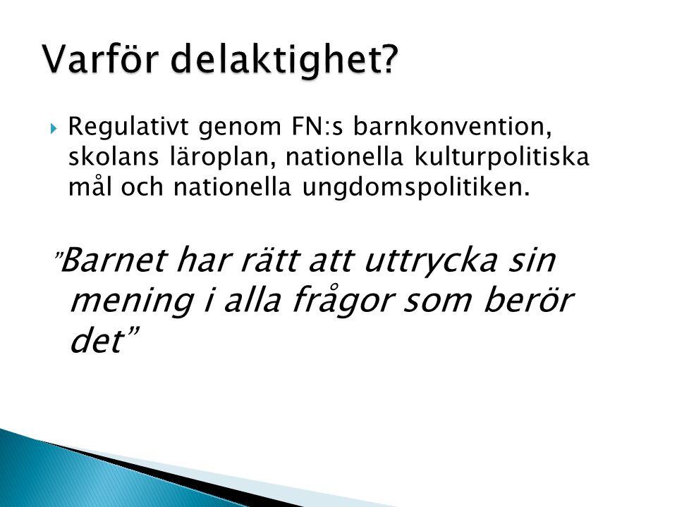  Regulativt genom FN:s barnkonvention, skolans läroplan, nationella kulturpolitiska mål och nationella ungdomspolitiken.