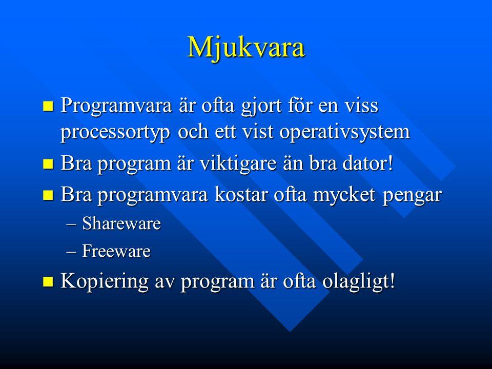 Mjukvara Programvara är ofta gjort för en viss processortyp och ett vist operativsystem Programvara är ofta gjort för en viss processortyp och ett vis