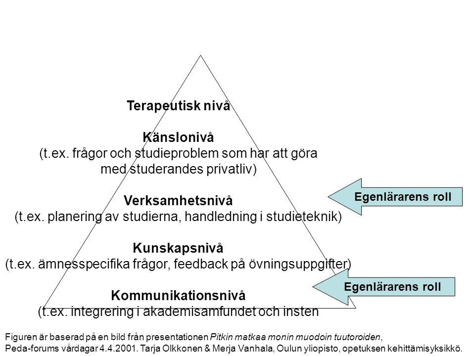 24.8.2012Åbo Akademi | Domkyrkotorget 3 | 20500 Åbo 9 Terapeutisk nivå Känslonivå (t.ex. frågor och studieproblem som har att göra med studerandes pri