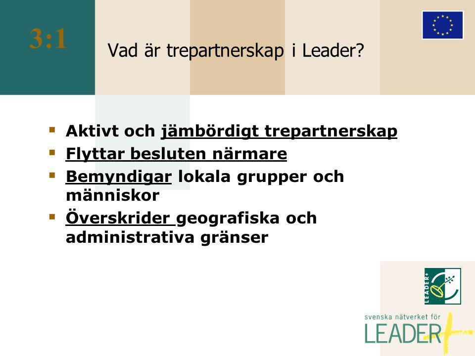 Vad är trepartnerskap i Leader.