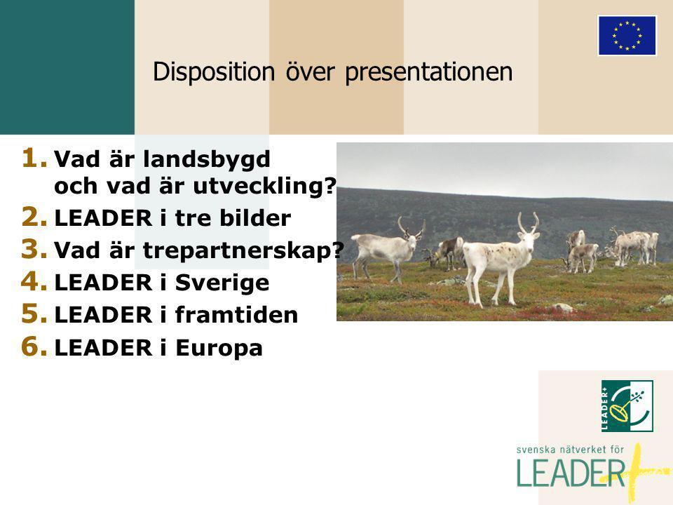LEADER i tre bilder  Ett aktivt ansvarstagande, bemyndigat, trepartnerskap  Inte ett sätt att fördela projektmedel utan en metod för lokal utveckling  Inom ett avgränsat geografiskt område  Effektiv användning av resurserna  Gemensam utveckling, förvaltning och finansiering 2:2
