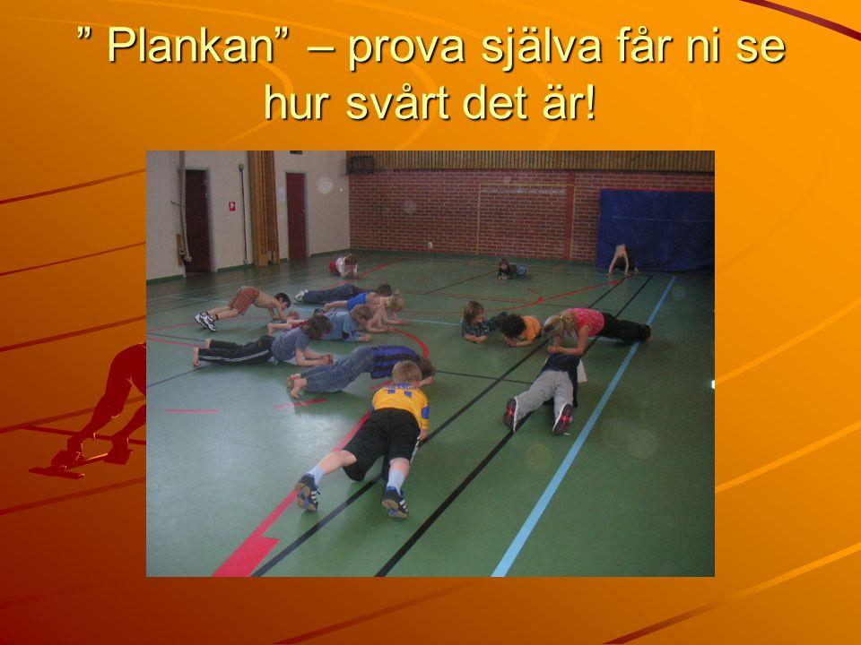 Plankan – prova själva får ni se hur svårt det är!