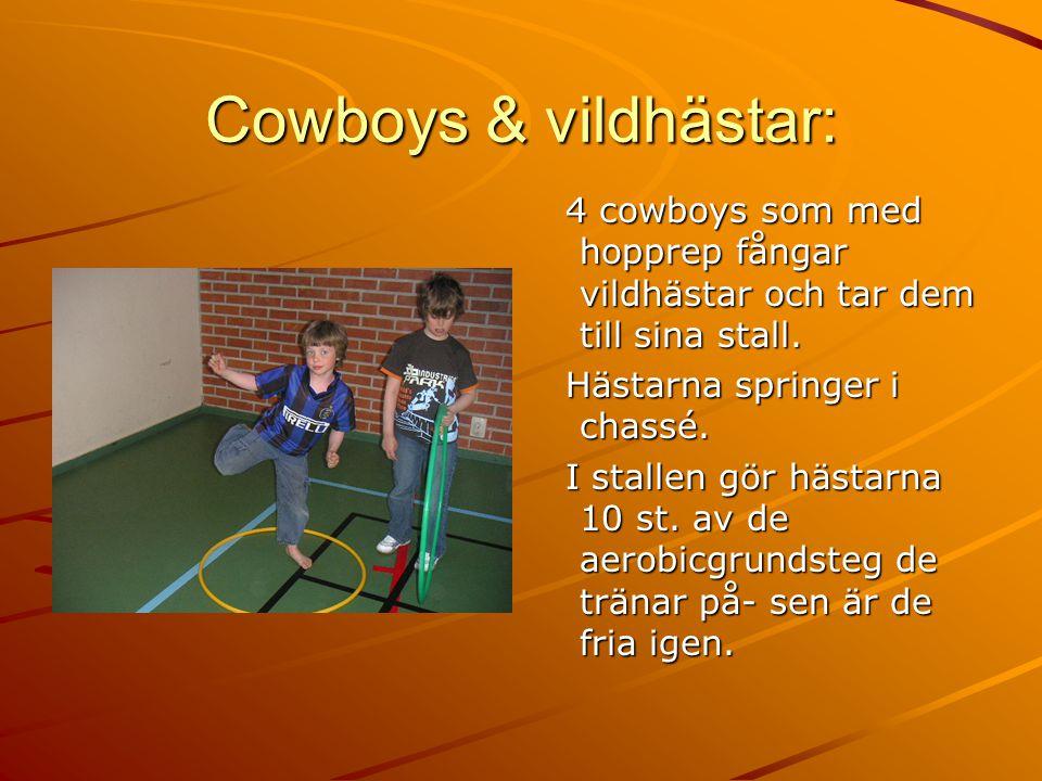 Cowboys & vildhästar: 4 cowboys som med hopprep fångar vildhästar och tar dem till sina stall.