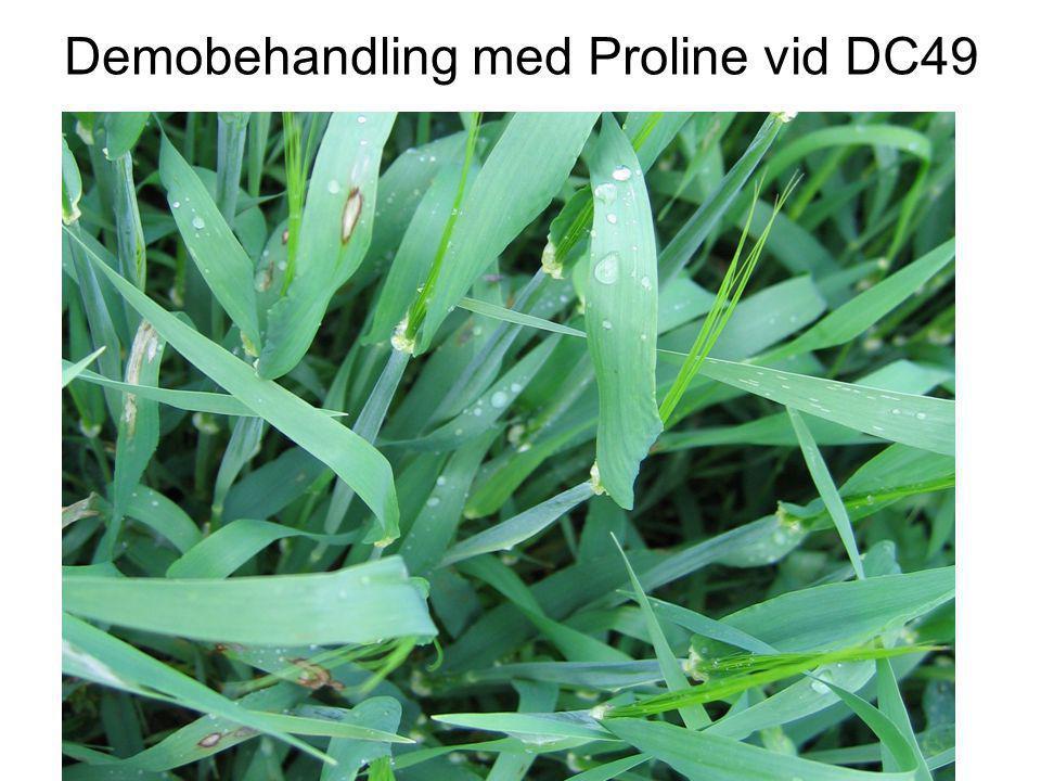 Demobehandling med Proline vid DC49