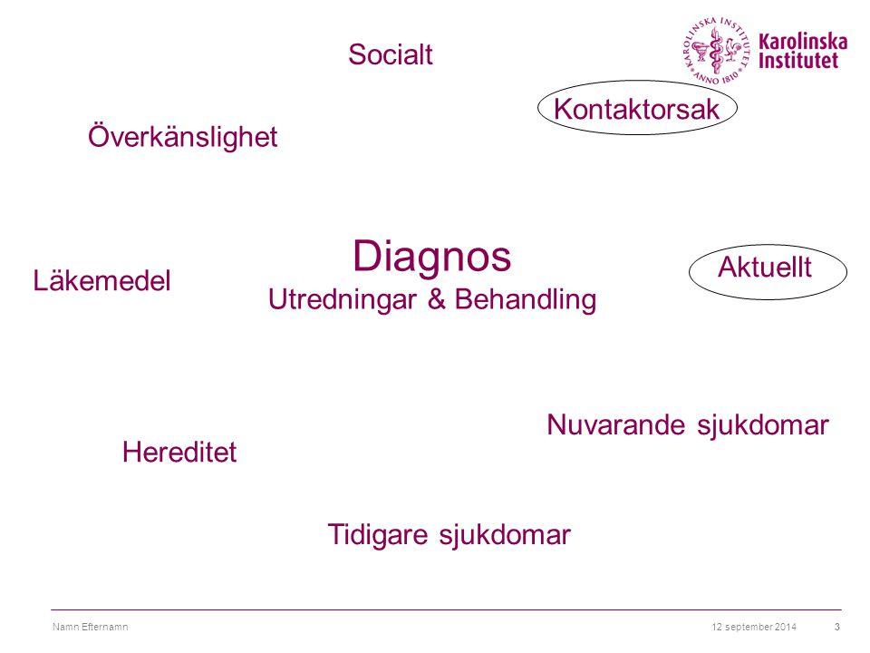12 september 2014Namn Efternamn3 Överkänslighet Diagnos Utredningar & Behandling Hereditet Tidigare sjukdomar Nuvarande sjukdomar Aktuellt Kontaktorsa