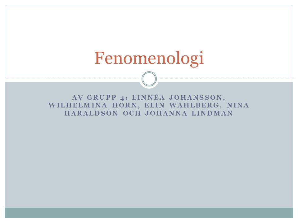 AV GRUPP 4: LINNÉA JOHANSSON, WILHELMINA HORN, ELIN WAHLBERG, NINA HARALDSON OCH JOHANNA LINDMAN Fenomenologi