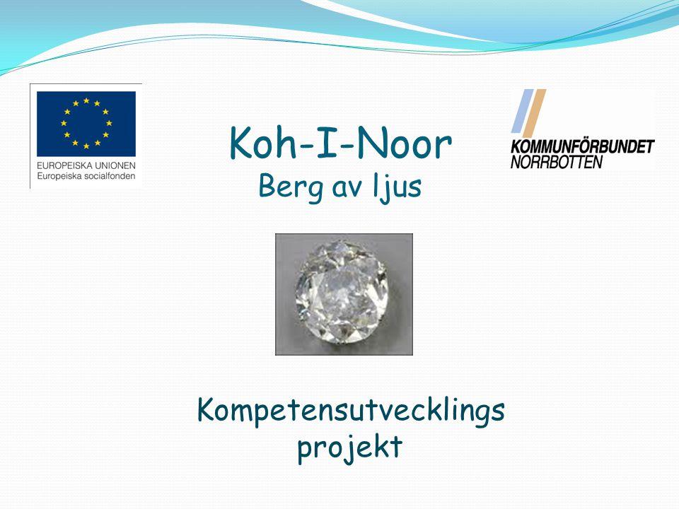 Projektets längd & delar 2010-10-01 2012-11-30 Mobiliseringsfas 2011-03-25 Kartläggning, planering och utbildning Genomförandefas 2012-11-30 Utbildning av målgrupp