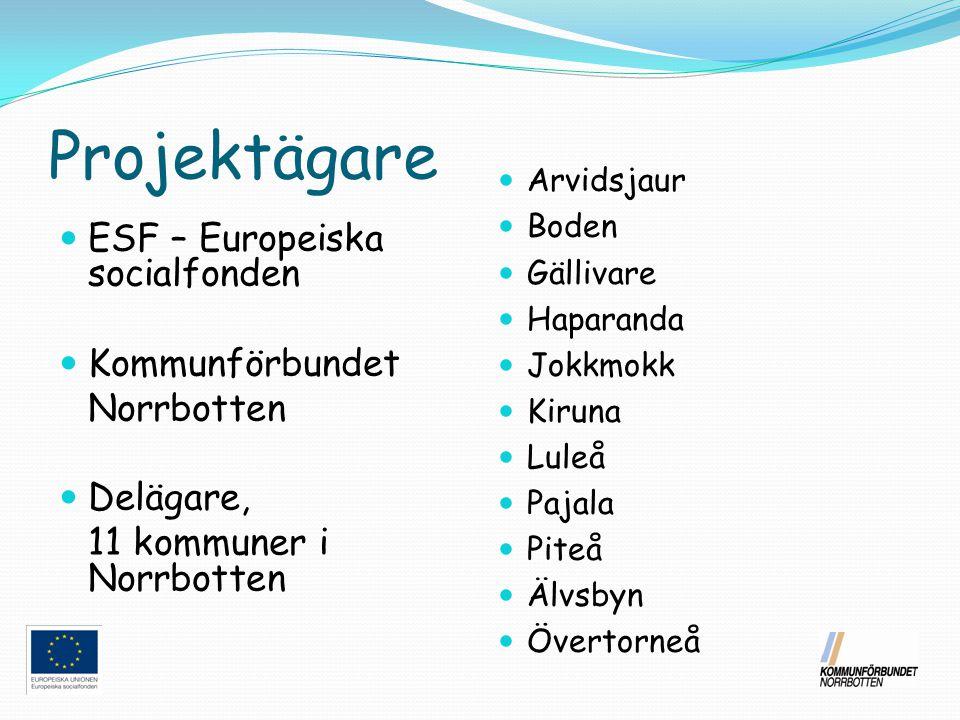 Projektägare ESF – Europeiska socialfonden Kommunförbundet Norrbotten Delägare, 11 kommuner i Norrbotten Arvidsjaur Boden Gällivare Haparanda Jokkmokk