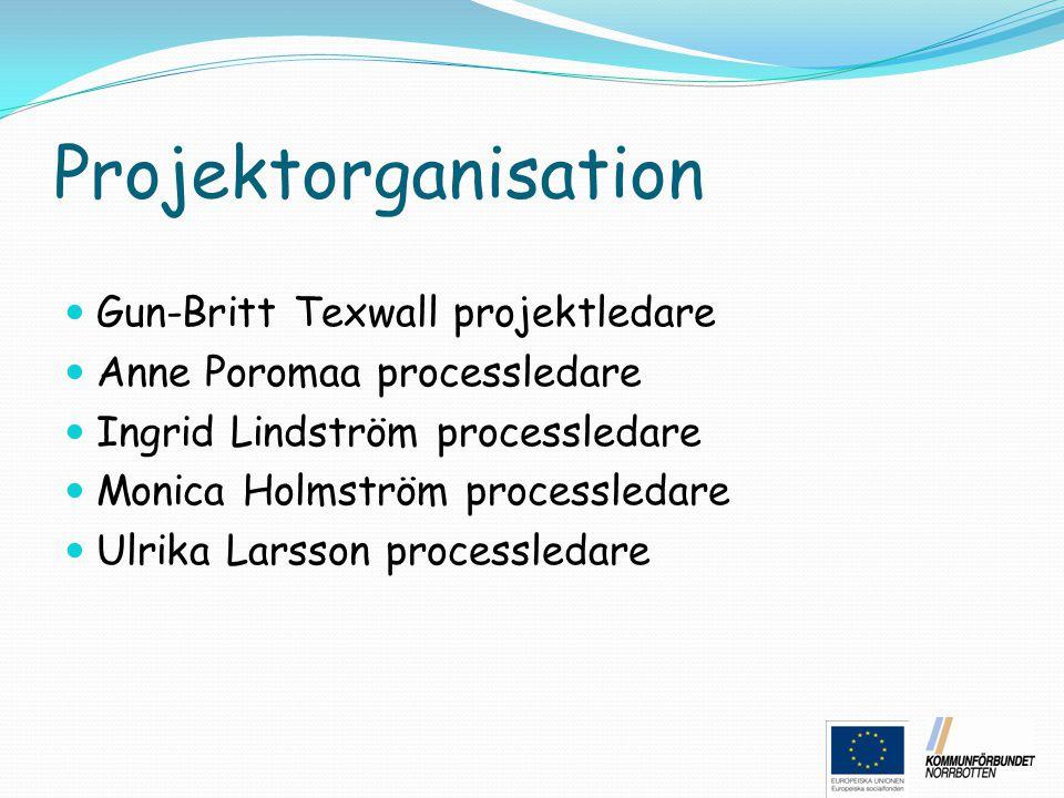 Projektorganisation Gun-Britt Texwall projektledare Anne Poromaa processledare Ingrid Lindström processledare Monica Holmström processledare Ulrika La
