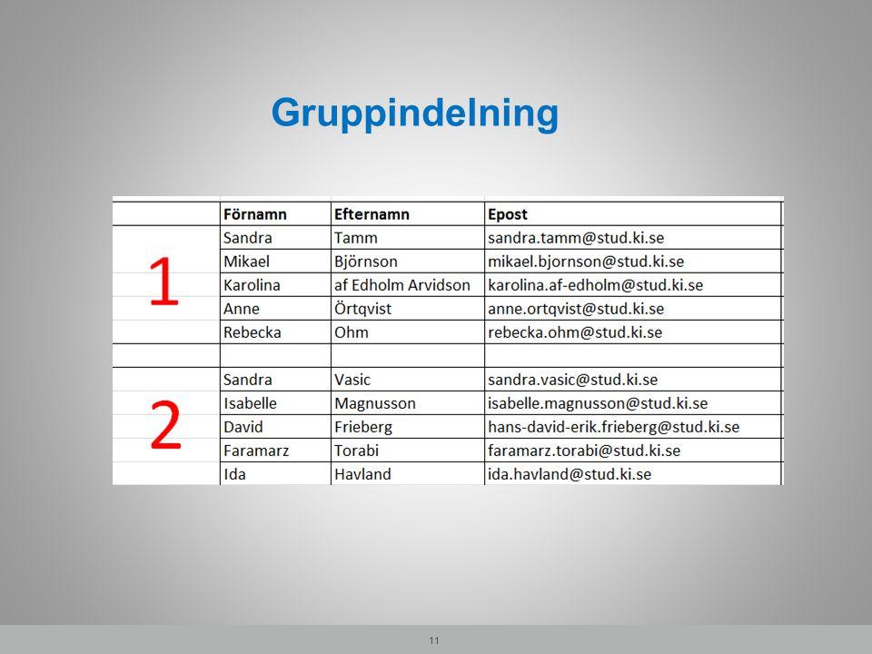 Gruppindelning 11