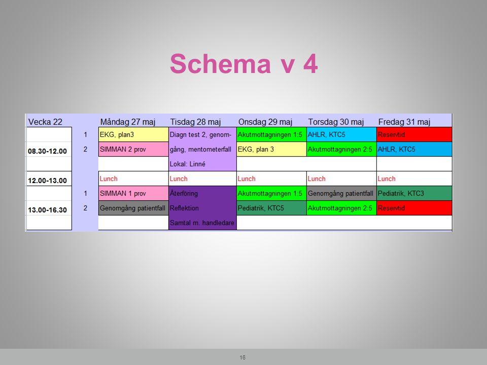 Schema v 4 16