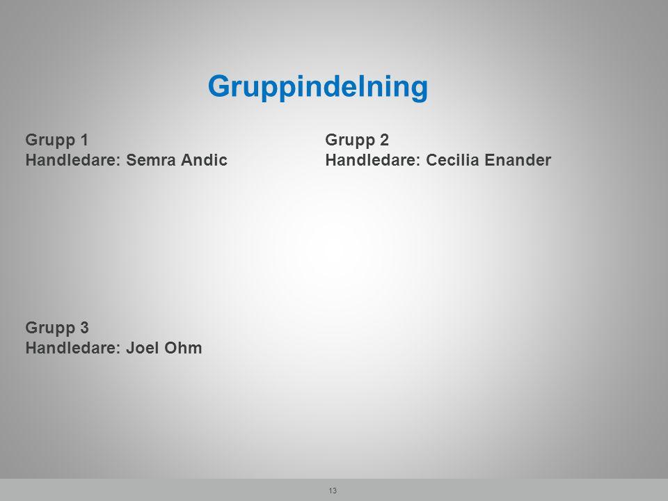 Gruppindelning 13 Grupp 1 Handledare: Semra Andic Grupp 2 Handledare: Cecilia Enander Grupp 3 Handledare: Joel Ohm