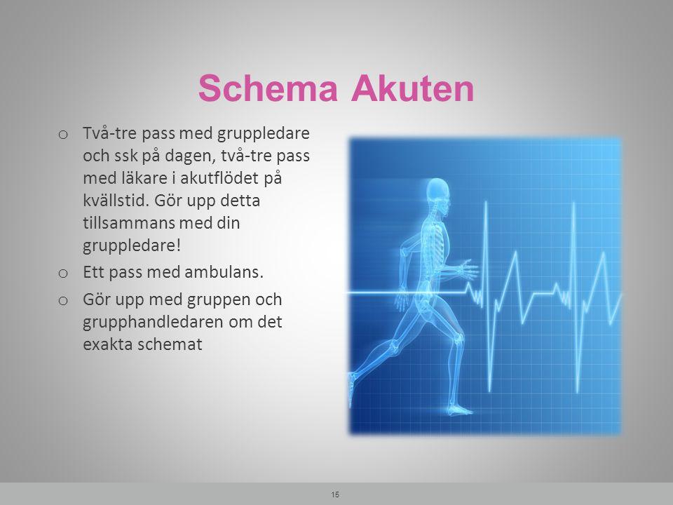 Schema Akuten o Två-tre pass med gruppledare och ssk på dagen, två-tre pass med läkare i akutflödet på kvällstid.