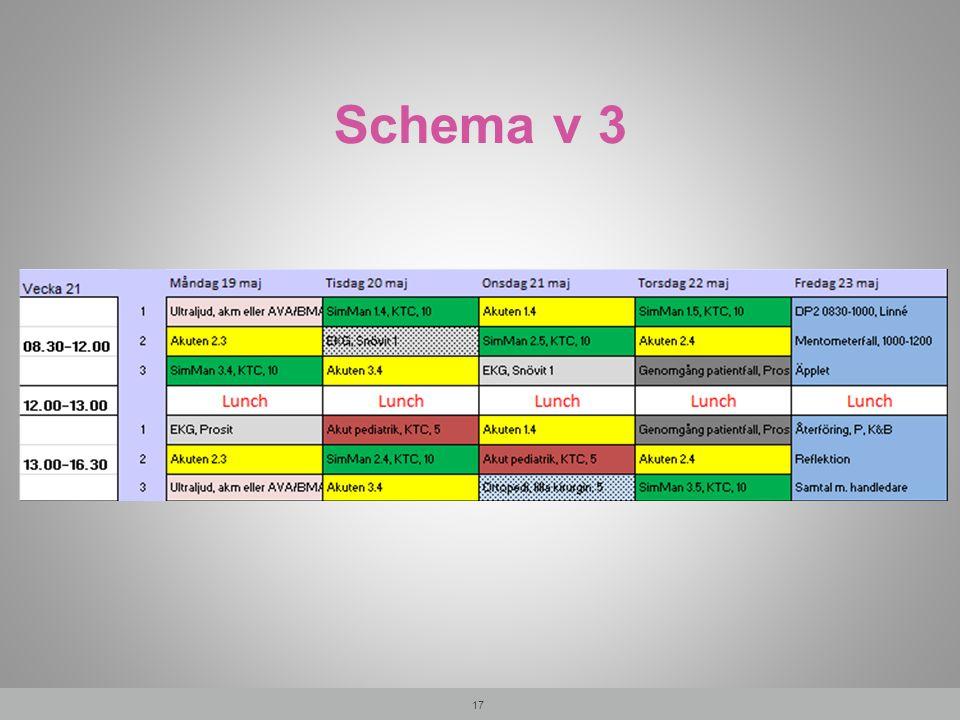 Schema v 3 17
