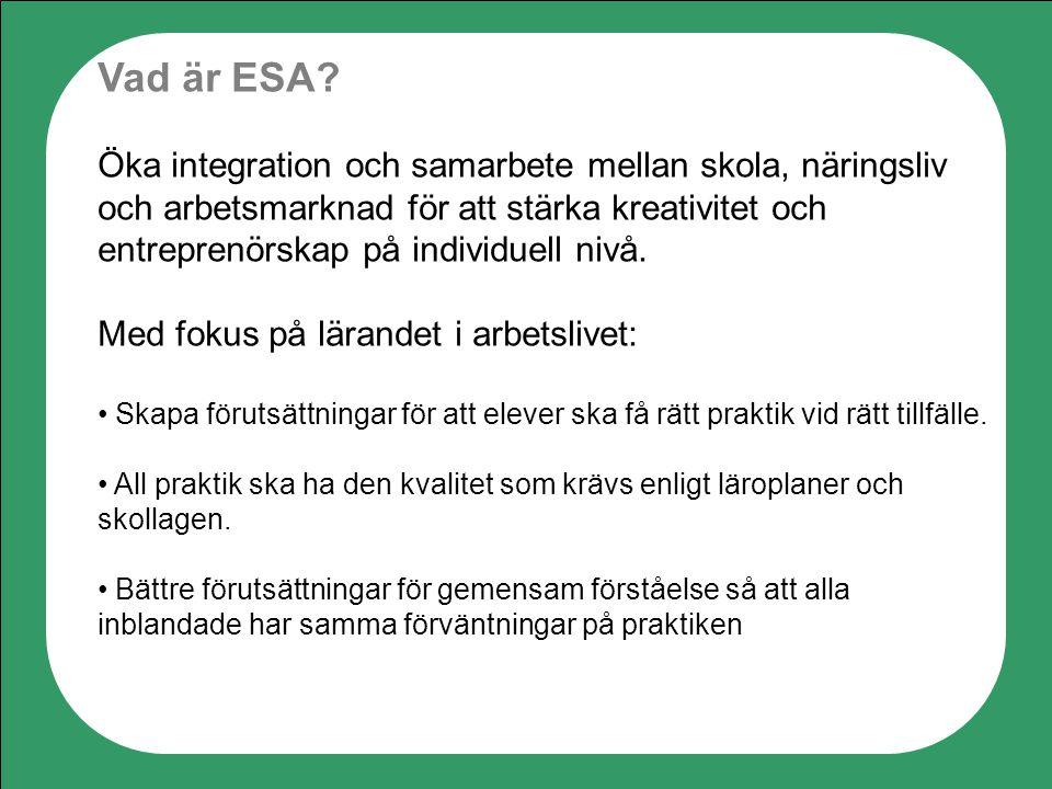 Vad är ESA? Öka integration och samarbete mellan skola, näringsliv och arbetsmarknad för att stärka kreativitet och entreprenörskap på individuell niv