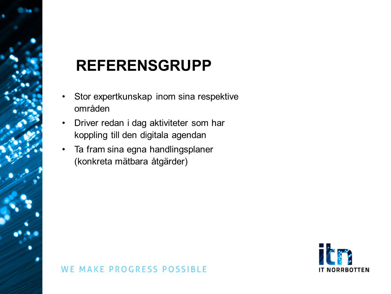 REFERENSGRUPP Stor expertkunskap inom sina respektive områden Driver redan i dag aktiviteter som har koppling till den digitala agendan Ta fram sina e