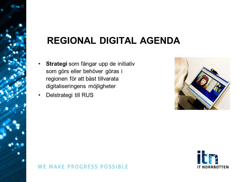 IT NORRBOTTENS UPPDRAG Uppdrag från regionala partnerskapet: Ta fram ett förslag till regional digital agenda IT Norrbottens roll: Projektledning Samordning Tidsplan: Start november 2012 – december 2013