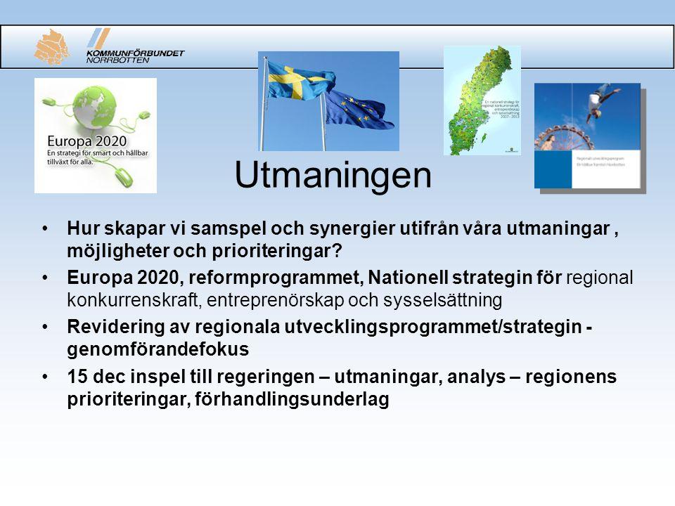 Utmaningen Hur skapar vi samspel och synergier utifrån våra utmaningar, möjligheter och prioriteringar.