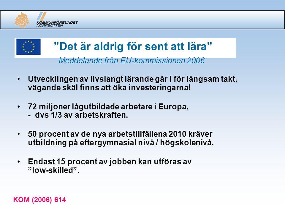 """""""Det är aldrig för sent att lära"""" Meddelande från EU-kommissionen 2006 Utvecklingen av livslångt lärande går i för långsam takt, vägande skäl finns at"""