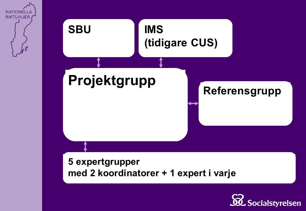 Projektgrupp SBUIMS (tidigare CUS) Referensgrupp 5 expertgrupper med 2 koordinatorer + 1 expert i varje