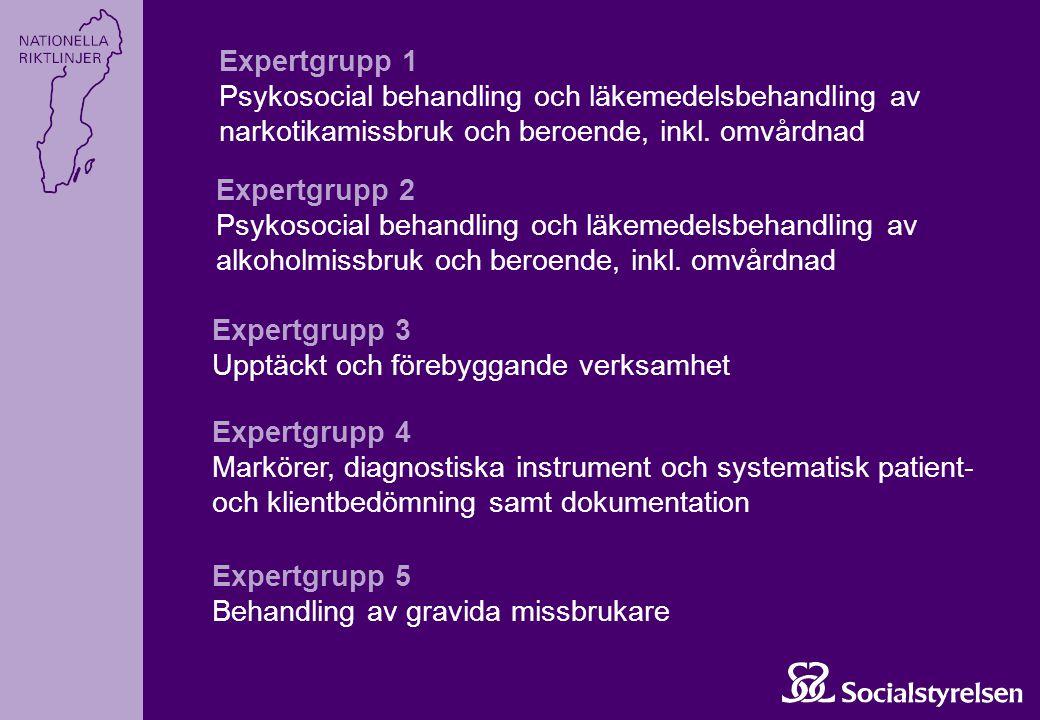 Expertgrupp 1 Psykosocial behandling och läkemedelsbehandling av narkotikamissbruk och beroende, inkl. omvårdnad Expertgrupp 2 Psykosocial behandling